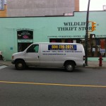 Furniture Donation Pick-Up / Drop Off - The Wildlife Thrift Store - Downtown - Vancouver
